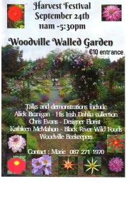 Talks and demonstrations include Alick Branigan on his Irish Dahlia collection, Chris Evans Florist Designer, Kathleen McMahon from Black River Wild Foods and the Woodville Beekeepers. E